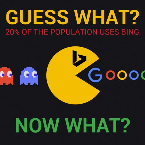 20% use Bing. Now What?